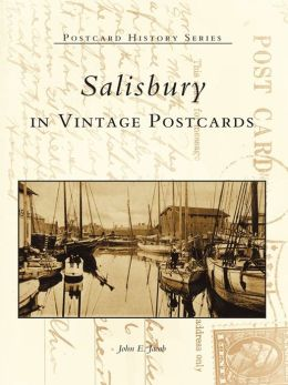 Salisbury in Vintage Postcards