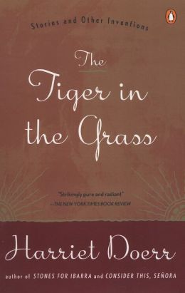 The Tiger in the Grass: Stories and Other Inventions