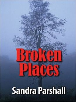 Broken Places: Rachel Goddard Mystery Series, Book 3