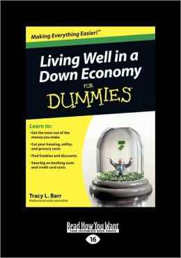 Living Well In A Down Economy For Dummies (Easyread Large Edition)