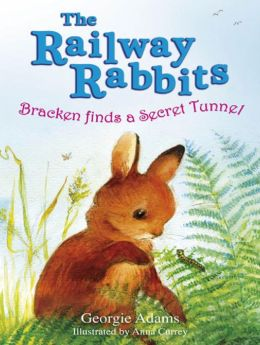 Bracken Finds a Secret Tunnel: The Railway Rabbits: Book Five