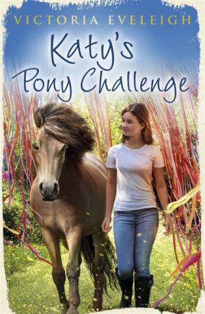 Katy's Pony Challenge: Katy's Exmoor Ponies 4