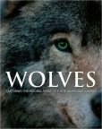 Book Cover Image. Title: Wild World - Wolves, Author: Parragon