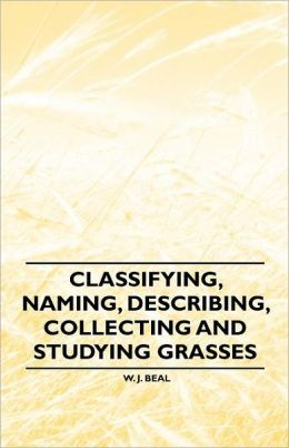 Classifying, Naming, Describing, Collecting And Studying Grasses
