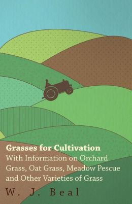 Grasses For Cultivation - With Information On Orchard Grass, Oat Grass, Meadow Pescue And Other Varieties Of Grass