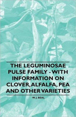 The Leguminosae Pulse Family - With Information On Clover, Alfalfa, Pea And Other Varieties