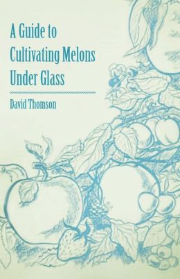 A Guide To Cultivating Melons Under Glass