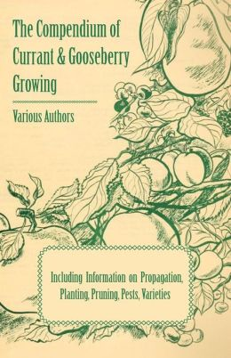 The Compendium of Currant and Gooseberry Growing - Including Information on Propagation, Planting, Pruning, Pests, Varieties