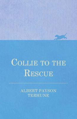 Collie to the Rescue