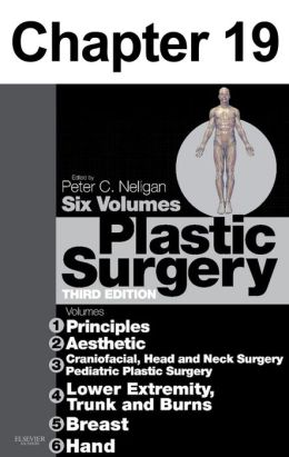 Tissue engineering: Chapter 19 of Plastic Surgery