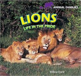 Lions: Life in the Pride