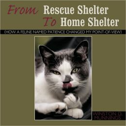 From Rescue Shelter to Home Shelter: How a Feline Named Patience Changed My Point-Of-View
