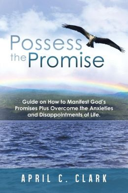 Possess the Promise: Guide on How to Manifest God's Promises Plus Overcome the Anxieties and Disappointments of Life.