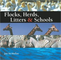 Flocks, Herds, Litters, and Schools