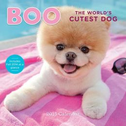 Boo The World's Cutest Dog 2015 Calendar