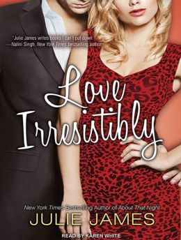 Love Irresistibly (FBI/US Attorney Series #4)