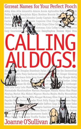 Calling All Dogs!: Grrreat Names for Your Perfect Pooch (PagePerfect NOOK Book)