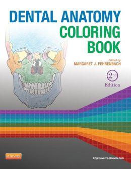 Dental Anatomy Coloring Book / Edition 2 by Margaret J. Fehrenbach 9781455745890 Paperback ...