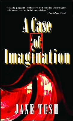 A Case of Imagination (Madeleine Maclin Series #1)