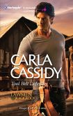 Tool Belt Defender (Harlequin Romantic Suspense Series #1687)
