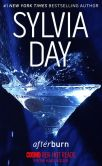 Book Cover Image. Title: Afterburn, Author: Sylvia Day