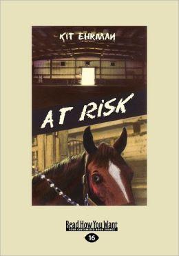 At Risk (Large Print 16pt)