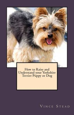 How to Raise and Understand Your Yorkshire Terrier Puppy or Dog