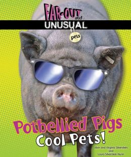 Potbellied Pigs: Cool Pets!