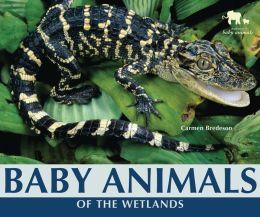 Baby Animals of the Wetlands