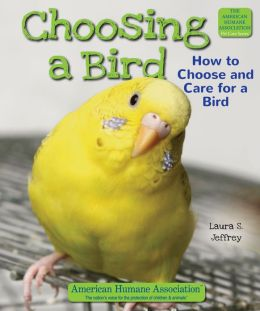 Choosing a Bird: How to Choose and Care for a Bird