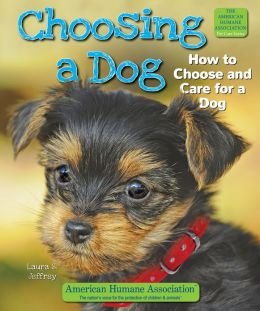 Choosing a Dog: How to Choose and Care for a Dog