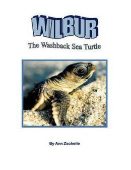 Wilbur the Washback Sea Turtle