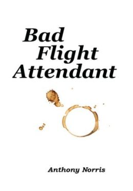 Bad Flight Attendant