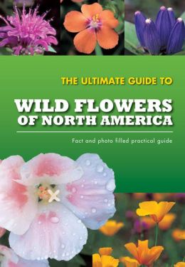 Practical Guide to Wildflowers