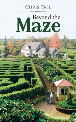 Beyond The Maze