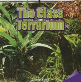 The Class Terrarium