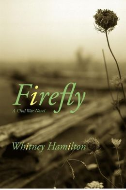 Firefly: A Civil War Story