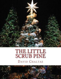 The Little Scrub Pine