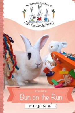 Bun on the Run: The Bunnyrific Adventures of Juni the Wonderbunny
