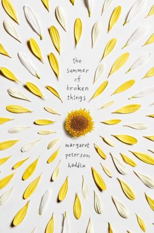 Book The Summer of Broken Things