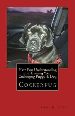 Have Fun Understanding and Training Your Cockerpug Puppy & Dog