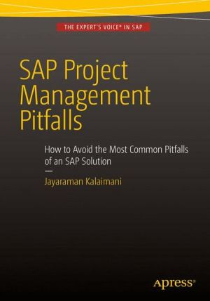 SAP Project Management Pitfalls: How to Avoid the Most Common Pitfalls of an SAP Solution