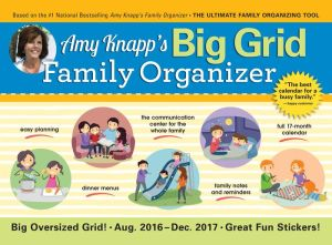 2017 Amy Knapp Big Grid Wall Calendar