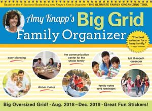 2019 Amy Knapp's Big Grid Wall Calendar: August 2018-December 2019