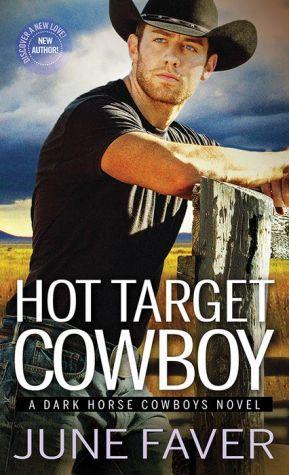 Book Hot Target Cowboy