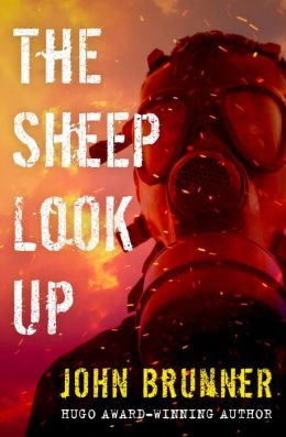 The Sheep Look Up
