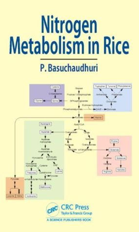 Nitrogen Metabolism in Rice