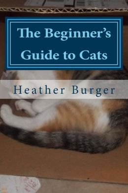 The Beginner's Guide to Cats