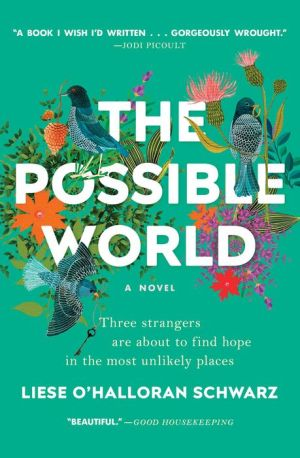 The Possible World: A Novel