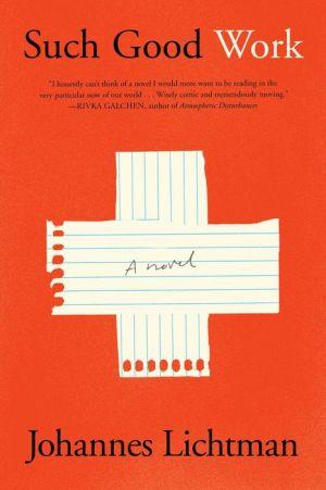 Book Such Good Work: A Novel